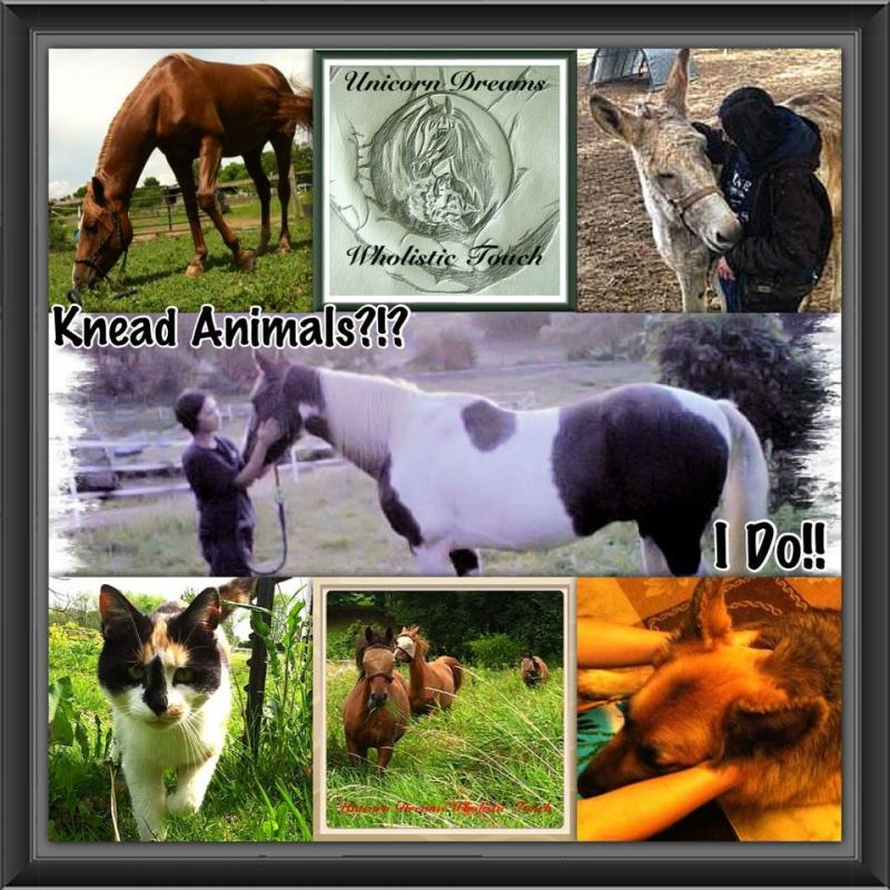 UDWT Knead Animals